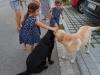 Amber vom Aggenstein & Chelsea vom Schmiehetal mit Kindern 02